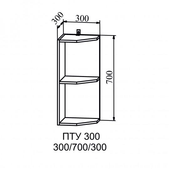 Капля шкаф навесной полка угловая на 300 | ПТУ300